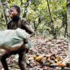 Salute e Sfruttamento Razzista : Gli Snack al Cioccolato sono Prodotti con La Schiavitù di Minori Africani